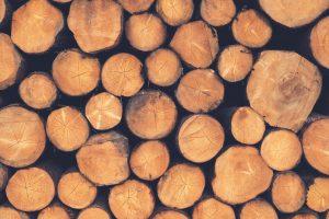 wood-1209632